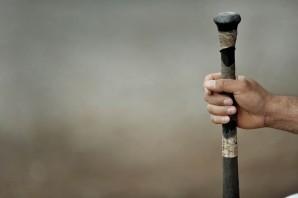 Baseball e Softball: Grizzlies contenti a metà. Due sconfitte per le Jacks