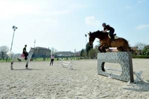 Equitazione: concorso ippico di Natale a Pinerolo