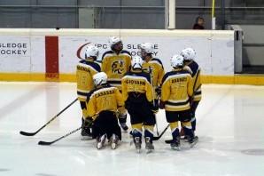 Hockey Ghiaccio: Torino Bulls al via della serie A femminile