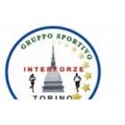 Gruppo Sportivo Interforze Torino