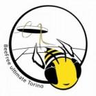 Ultimate Fresbee Torino