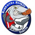 Barracuda Basket