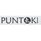 Torino Punto Ki