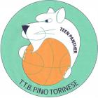 Torino Teen Basket