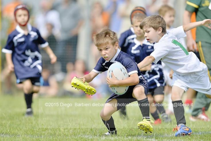 Torneo della Torre - VII Rugby