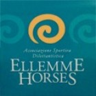 Ellemme Horses & Co