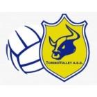 Torino Volley