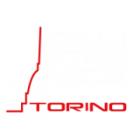 Calisthenics Torino