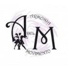 Armonia del Movimento