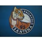 Pallavolo Santena 95