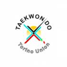 Torino Taekwondo Union