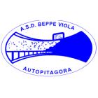 Beppe Viola Autopitagora