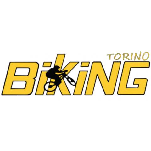 Biking Torino