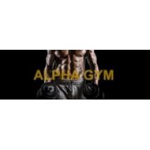 Alpha Gym Roger Gracie Torino