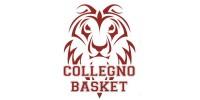 Collegno Basket