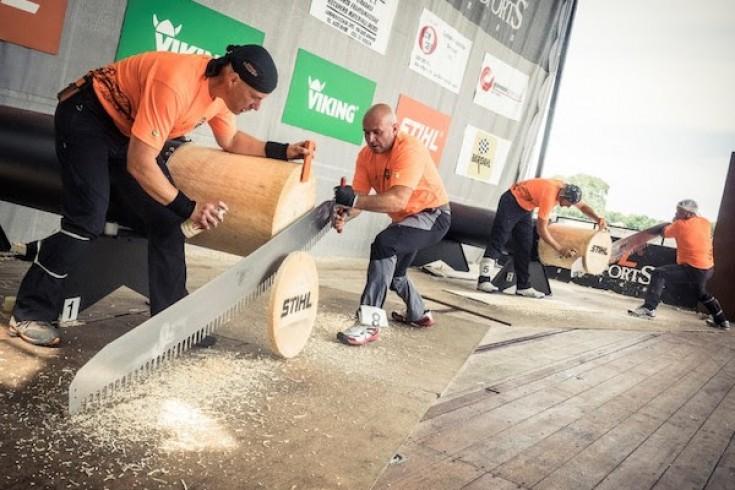 Campionato Italiano di Stihl Timbersports