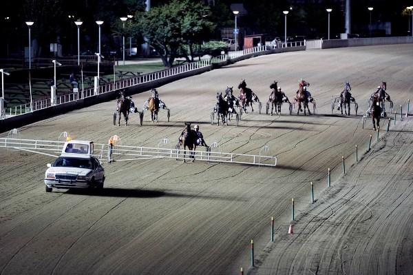 Ippodromo Vinovo - Foto di Massimo Pinca (41)
