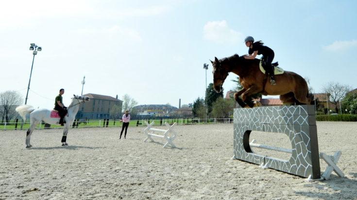 Equitazione Sportiva - Foto Massimo Pinca
