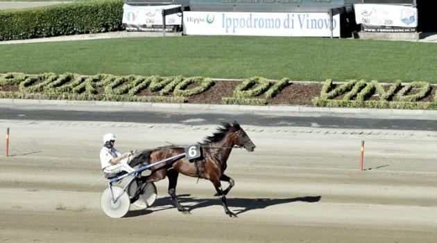 Leggi l'articolo: Ippica: mercoledì di corse a Vinovo con Gubellini protagonista