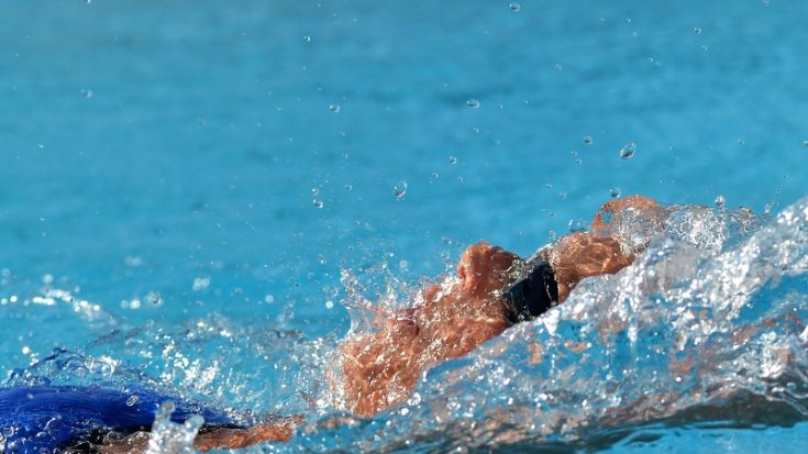 nuoto - Swimming Cup - foto Massimo Pinca