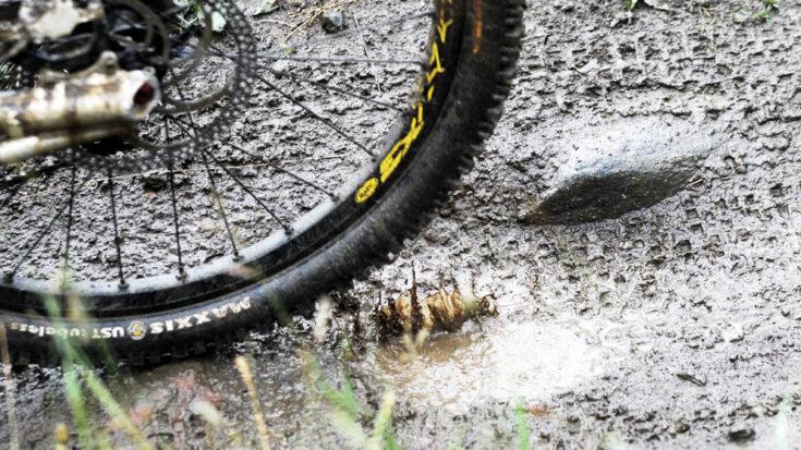 mountain bike - foto Massimo Pinca