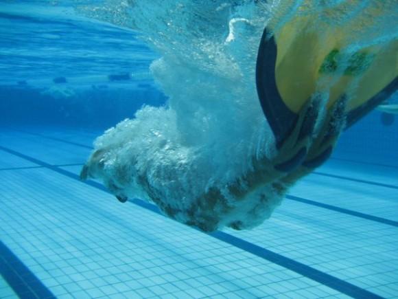 Campionati Italiani Estivi di Nuoto Pinnato